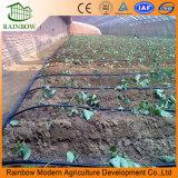 Agriculture Greenhouse Drip Sprinkler System Irrigation