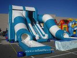 Inflatable Wild Tunnel Water Slide with Pool