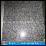 Polished Ice Blue Granite Tiles for Interior and External Decoration
