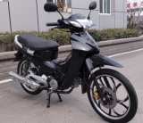 China New Cub Motorcycle 110, 120cc, 125cc