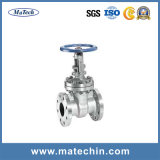 OEM Stainless Steel 304 and 316L Industrial Threaded Gate Valve
