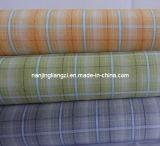 Cotton Yarn Dyed Dobby Paid Fabric (LZ5899)