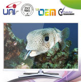 """42"""" Android Smart LED TV with HDMI USB"""