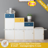 Modern Wooden Office Filing Cabinet /Storage Cabinet / Bookcase (HX-8ND9710)