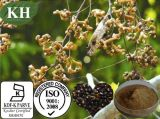 High Quality Natural Hovenia Dulcis Extract /Hovenia Acerba Lindl