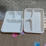 Composable Take out Container Food Box Biodegradable Lunch Tray