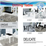 Ocean Shipping FCL (Chairs, Dining Table, office Tables)
