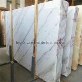 China Supplier of Athens White Marble