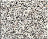 G341 Grey Granite Tiles for Flooring and Wall