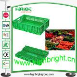Plastic Collapsible Vegetable Storage Bin for Supermarket