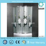 Stainless Steel Corner Shower Room (BLS-9613)