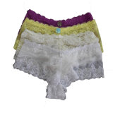 Seamless Fahion Sexy Lace Nylon Lady's Briefs (K048459)