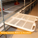 Qualtity automatic broiler battery cage equipment with poultry plastic flooring