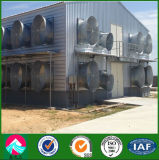 Steel Structure Poultry House/Shed, Chicken House