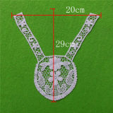 2014 Popular Embroidery Lace Collar (cn19)
