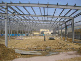 Steel Structure Workshop/ Steel Structure Warehouse (SSW-14348)