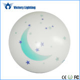 14W/18W LED Decor Indoor Household LED Ceiling Lighting