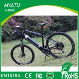 Mountain Style Electric Bikes with Fashion Design for Russian Market