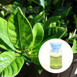 Edible Gardenia Green Pigment Gardenia Powder