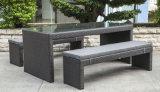 Garden Patio Wicker / Rattan Furniture Dining Set (LN-5079)