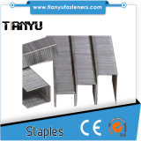 "Bea Type 20 Gauge 1/2"" Crown 80 Series Staples"