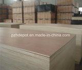 Poplar Okoume Bintangor Birch Veneered Commercial Plywood