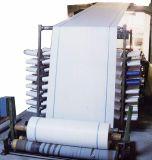 PE Woven Fabric Roll/Sheets