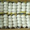 Fresh Garlic (4.5cm, 5.0cm, 5.5cm, 6.0cm)