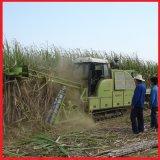 Crawler Sugarcane Harvesting Machine, Sugarcane Combine Harvester (4GZD)