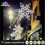 Outdoor LED Holiday Professional Christmas Decoration Lights Snowflake