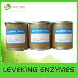 Industrial Enzyme (LVK-H)