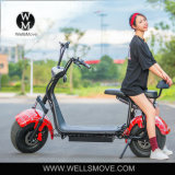 Big Wheel Hub Motor Powerful 1000W Motorcycle Scooter
