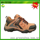 Best Selling Climbing Trekking Shoe Best Price in China
