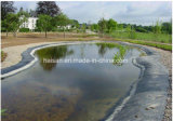 HDPE LDPE Geomembrane Liner for Artificial Lake Waterproofing