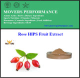 GMP Manufacture Supply Rose HIPS Fruit Extract