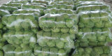 Fresh Green Cabbage with High Quality and Good Price