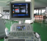 4D Full-Digital Color Ultrasound Scanner with Diagnostic System (MAV480)