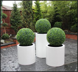 Fo-183 Cylinder Fiberglass Flower Pot for Home Garden