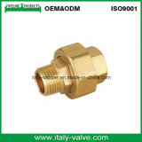 Certified Quality Forged Brass Union (AV-BF-7027)
