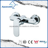 Modern Single Handle Brass Shower Mixer/Faucet (AF9160-4)