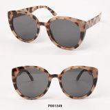 New Fashion Oversize Sunglasses
