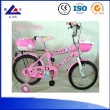Hebei Children Bicycle 16 Inch Kid Bike for 3 5 Years Old Child