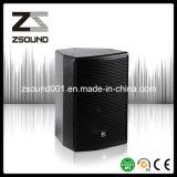 10inch Passive Loudspeaker DJ Speaker