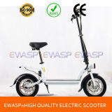 Ewasp Hub Geared Motor Foldable Standing Electric Scooter 300W