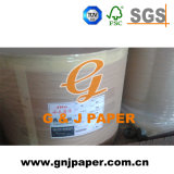 Hot Sale Good Quality 210mm Thermal Fax Paper Jumbo Roll