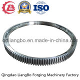 OEM Forging Part Stainless Steel Large External Gear