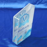 Customize Clear Trophy Laser Engraved Polished Acrylic Souvenir