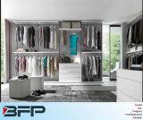Customized Walk in Closet Wardrobe Cabinets