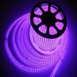 Purple 220V/120V LED Strip Light Rope LED Lighting 5050 RGB