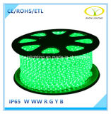 SMD5050 IP65 50m/Roll LED Rope Light with ETL Approval